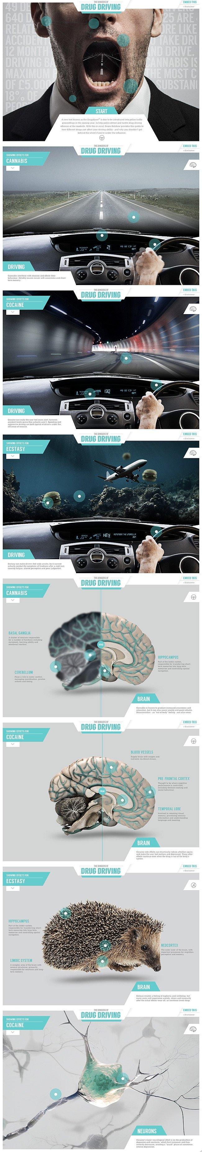 Info-graphic Interactive Website
