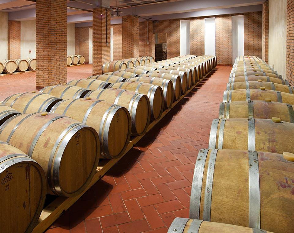 vasilikon winery website
